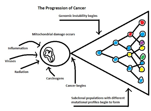 Progressionofcancer